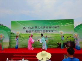云雾茶镇·秀美里山 2017杭州茶文化博览会