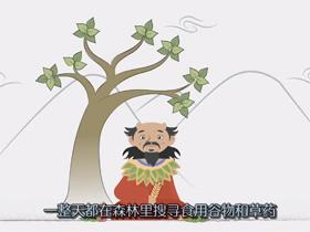 茶叶的历史