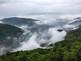 安顶山的雾