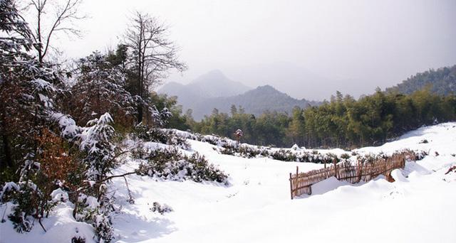 江南雪乡——富阳安顶山