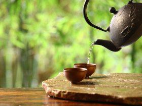 茶叶如何鉴定,从茶形、茶色、茶汤、茶底四个角度详细阐述